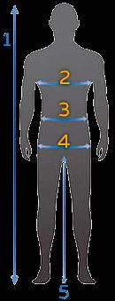 Схема измерений для определения размеров мужской одежды