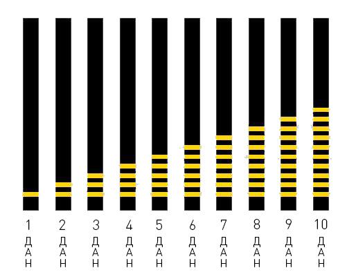 Градация рангов и поясов: даны