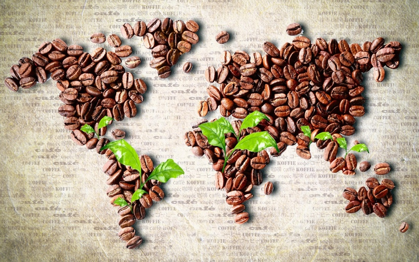 фото натурального кофе в зернах