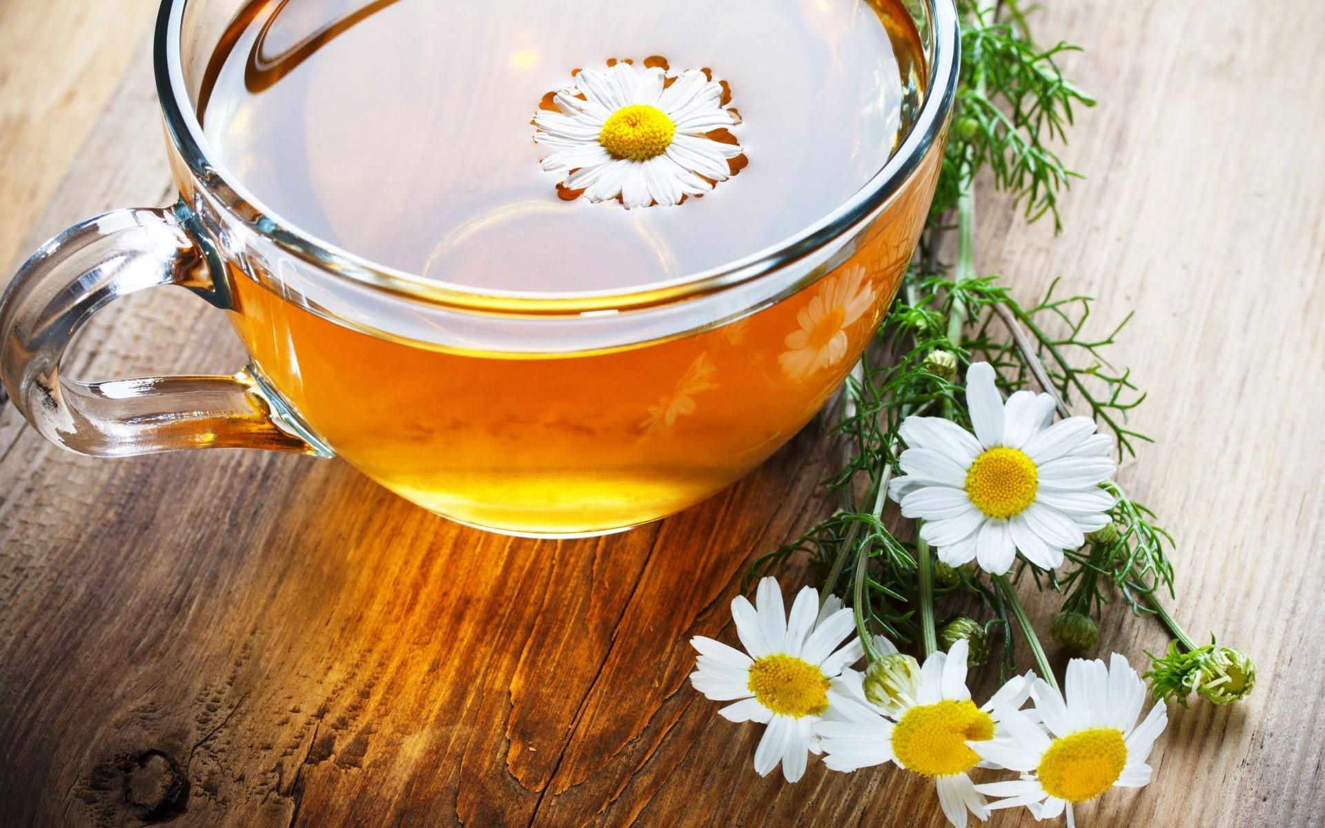 Фото крупнолистового чая