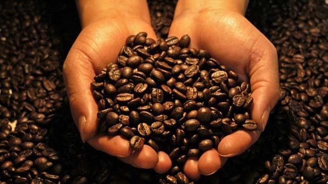 фото сбалансированного зернового кофе