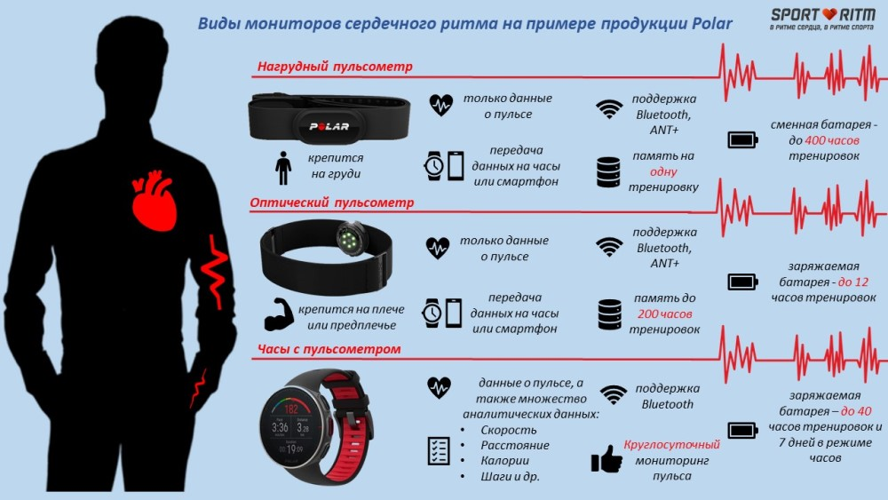 Инфографика по видам мониторов сердечного ритма Polar