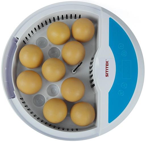 Автоматический мини инкубатор для куриных и перепелиных яиц SITITEK 9 LED