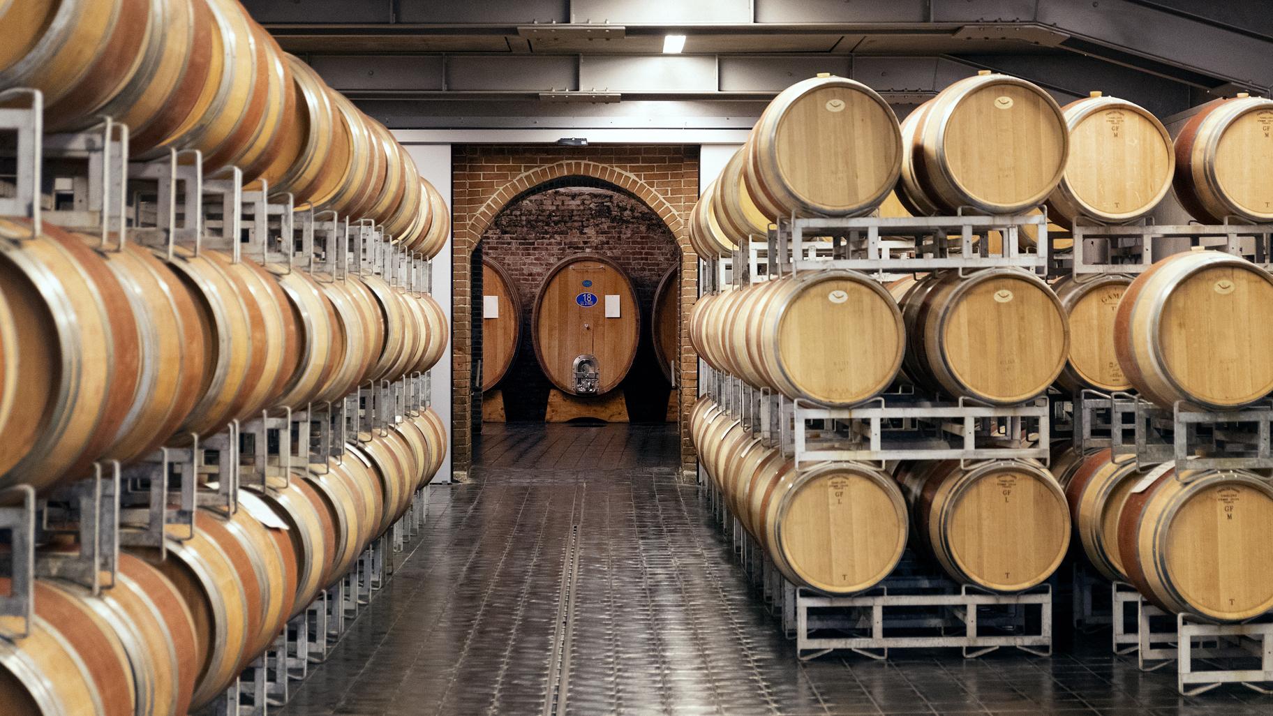 Gaja winery