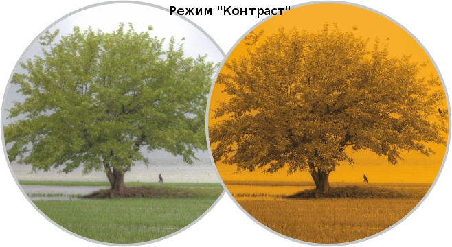 expert_viewing_modes_contrast_mode.jpg