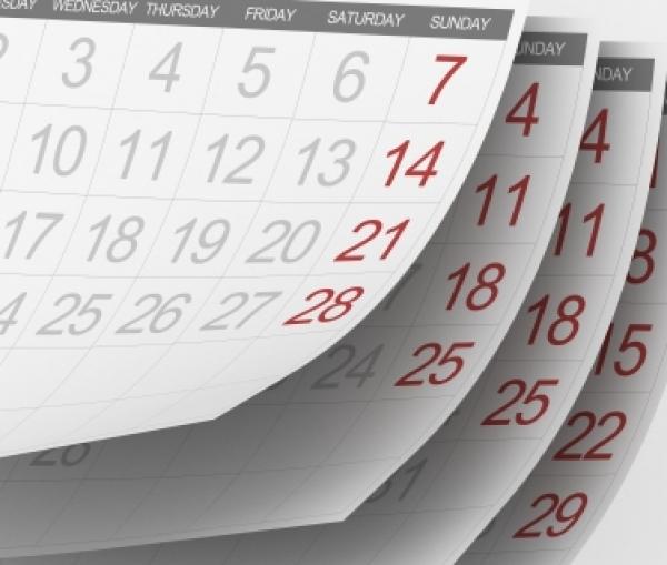 Порядок работы в январе интернет-магазина Кактус-Опт