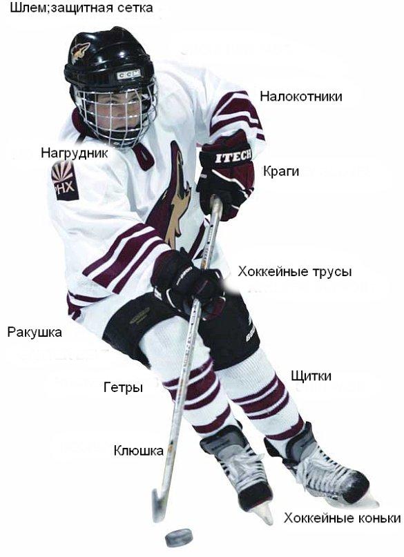 Как выбрать хоккейное снаряжение для ребенка?