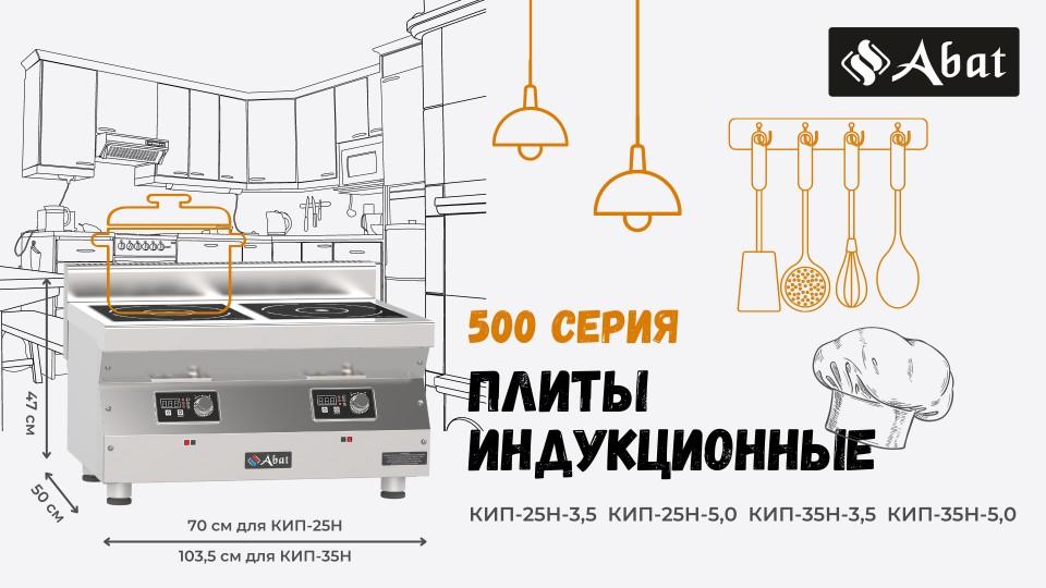 Настольные индукционные плиты 500 серии