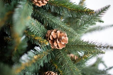 елки с Шишками