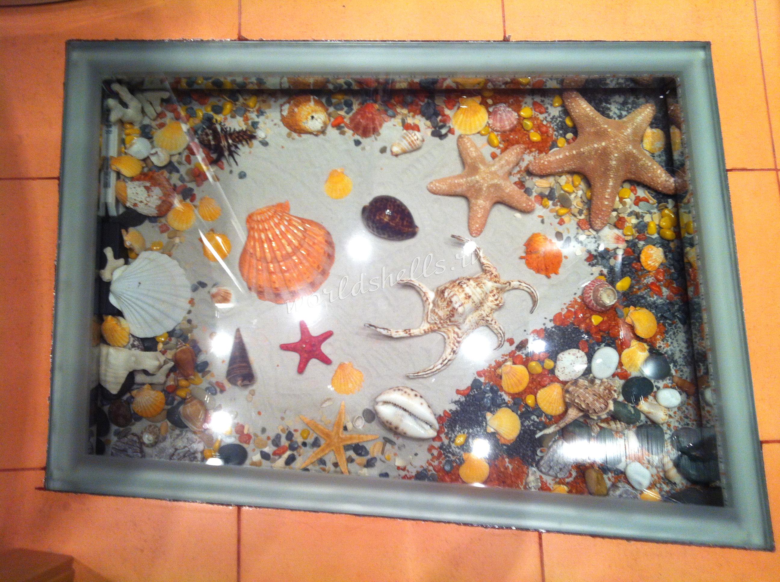 Ниша в полу с морскими ракушками, интерьерная напольная ниша