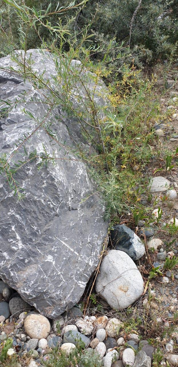 Глыба камень мраморный Чёрный 3