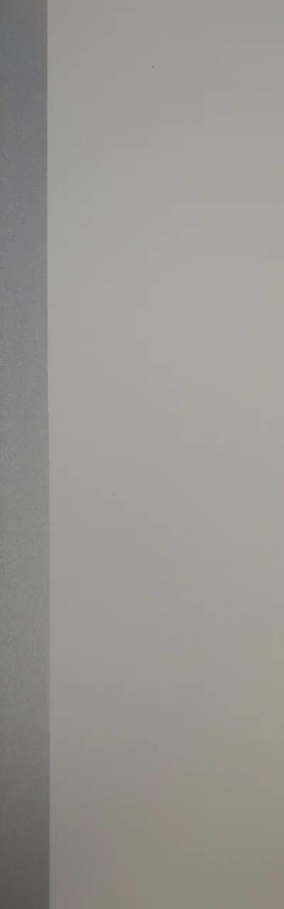 Бук Иней серебро