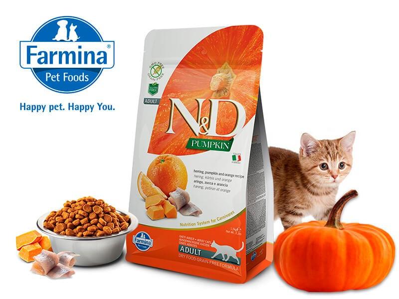 Корм для кошек в котором находятся все необходимые витамины и питательные вещества