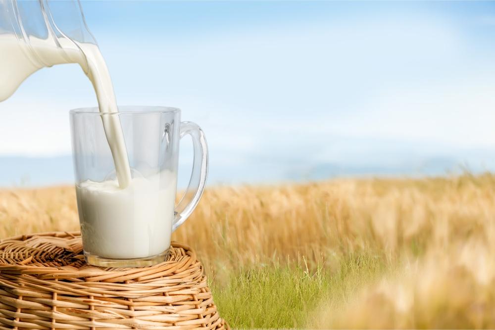 Сепаратор для молока купить в Москве, Домодедово недорого