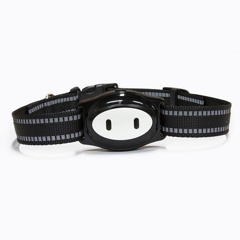 GPS ошейник для животных Wonlex Smart Pet Tracker PT02