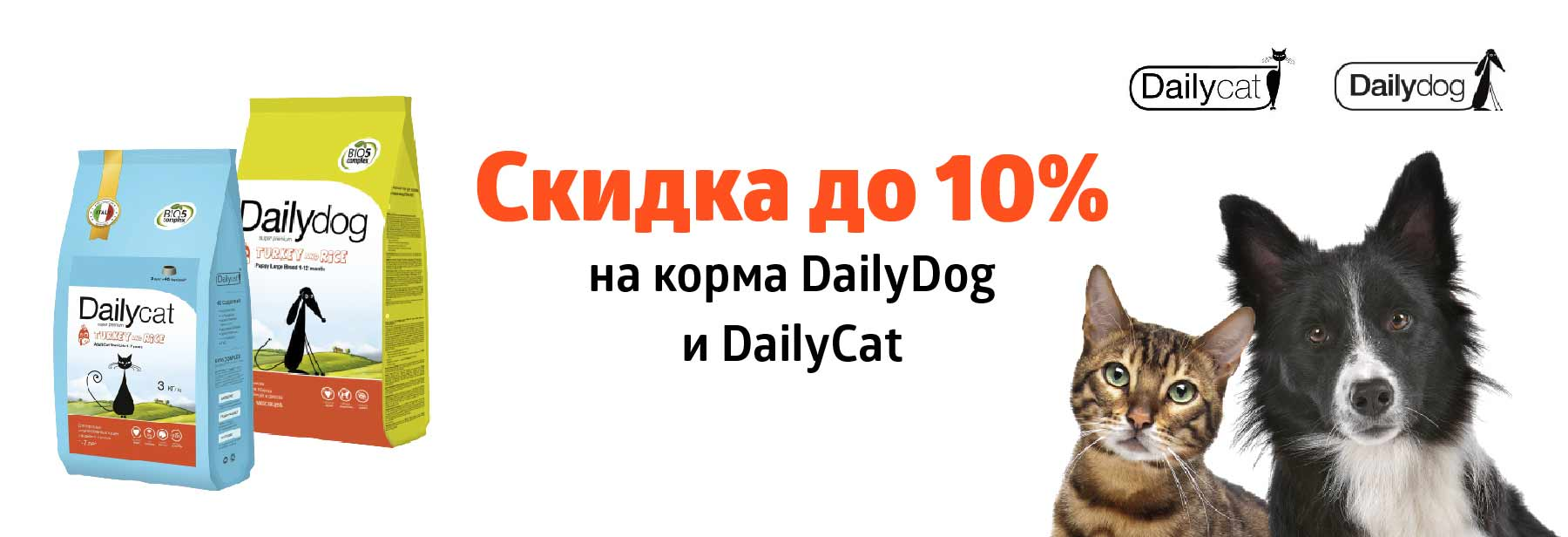 Dailypet