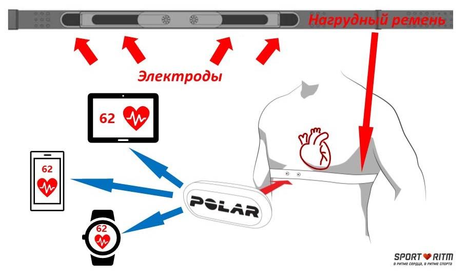 Принцип работы Polar H10