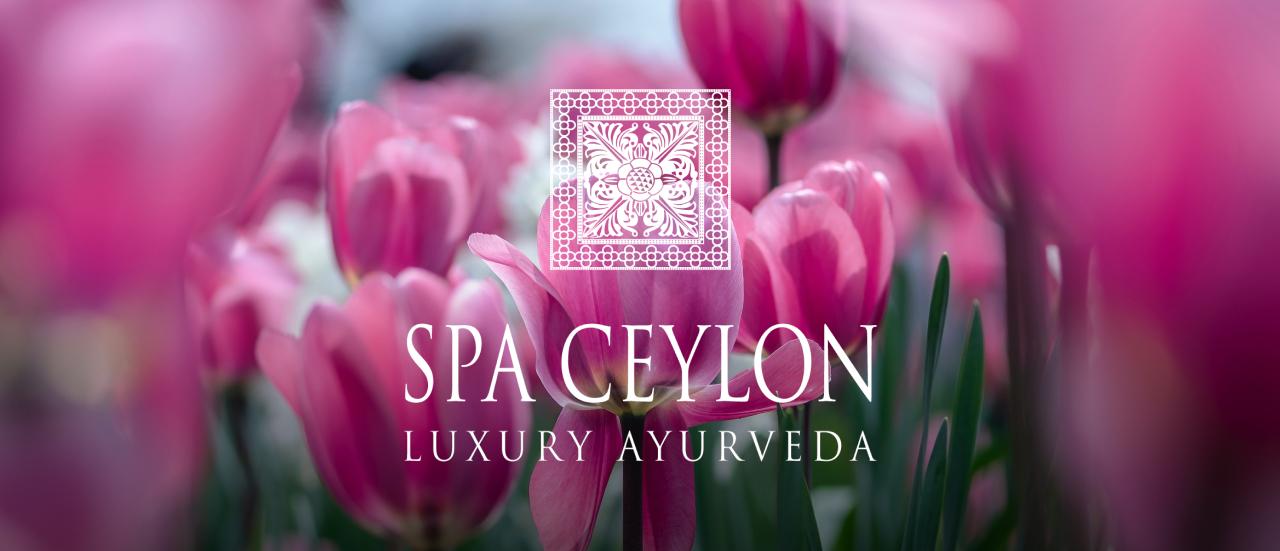 Уход за кожей весной вместе со Spa Ceylon
