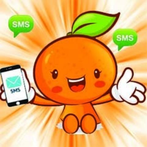 Добавлена система автоматической отправки смс оповещений о ходе выполнения заказ.