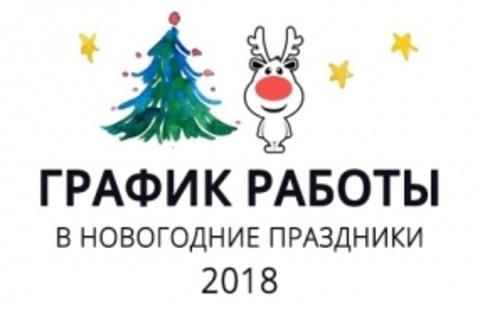 График работы в Новогодние праздники 2018