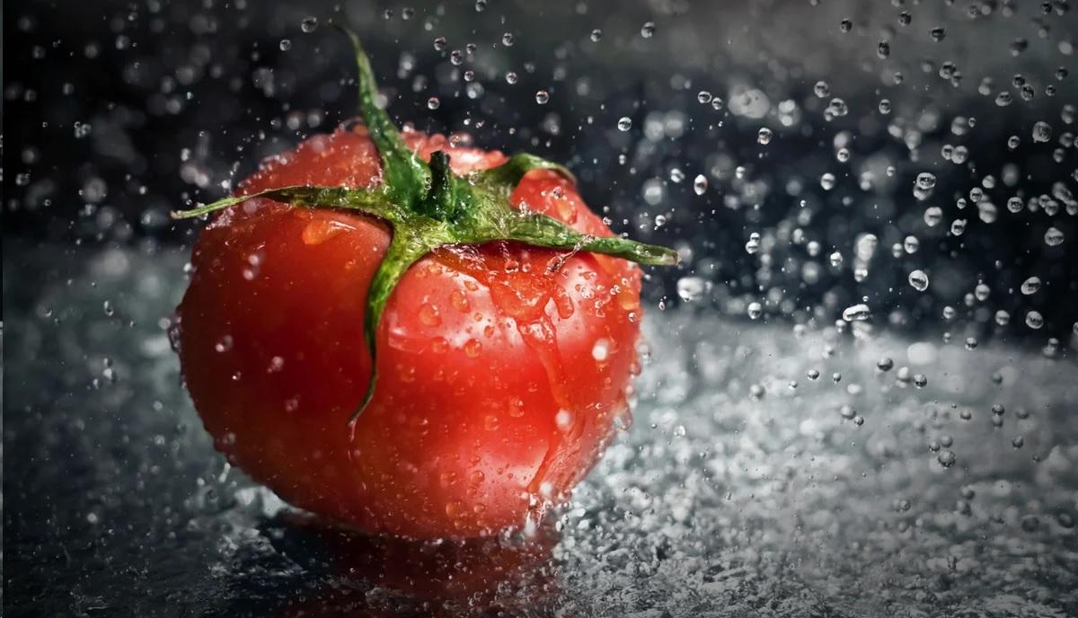 Спасаем помидоры в дождливый сезон!