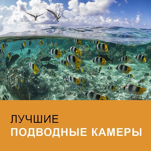 Лучшие подводные камеры