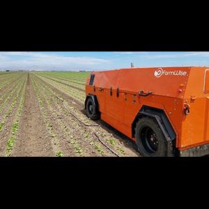 Автономный робот-овощевод вышел на прополку