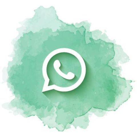 Начат прием заявок через WhatsApp