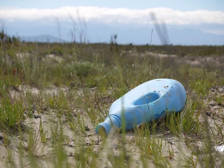 Влияние мусора на природу