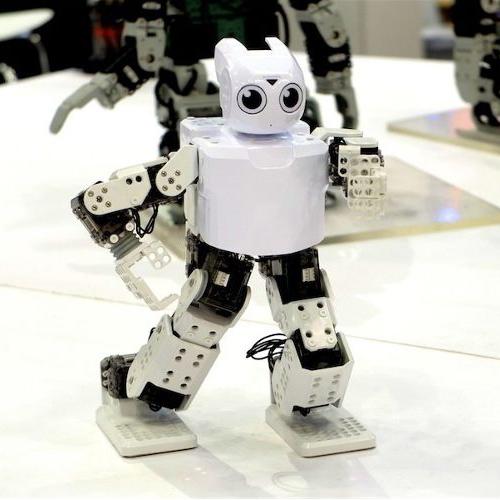 Робототерапия для детей с аутизмом