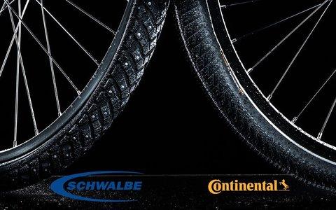 Новое поступление покрышек Continental и Schwalbe!