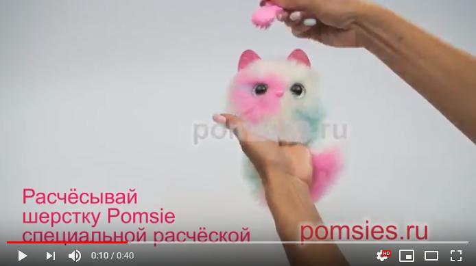 Правила ухода за котенком Pomsies: