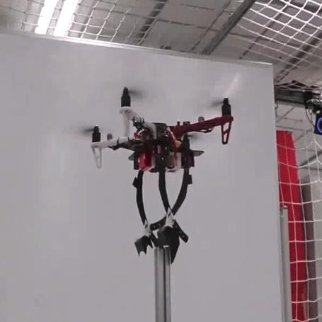 Создан дрон, сидящий на ветках