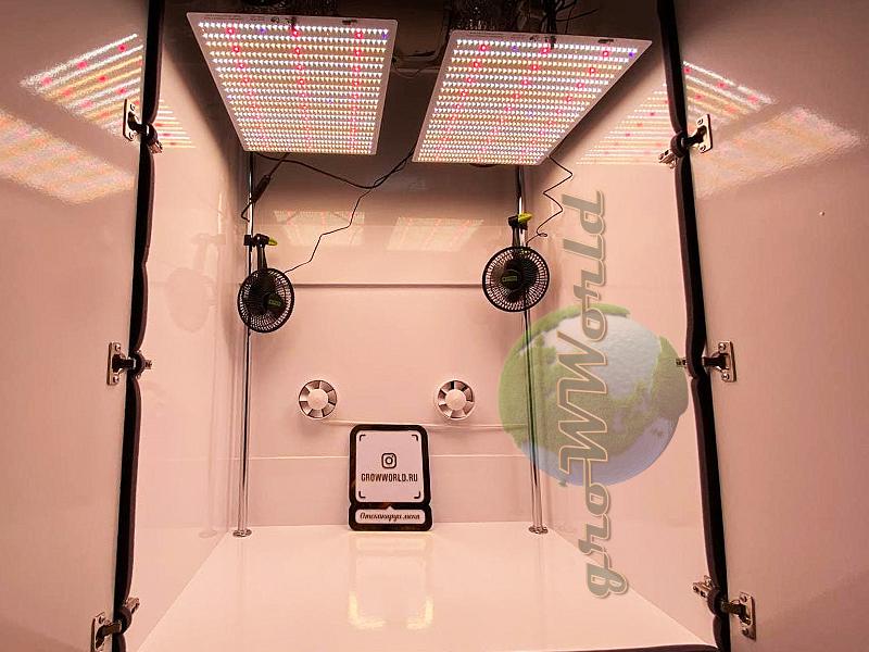 Поступление новейших ламп Quantum Board Firefly 2.0 240W