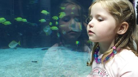 Домашний ребёнок: как помочь влиться в коллектив?