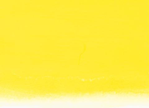 Nicker DESIGNERS COLOUR 501 LEMON YELLOW