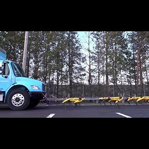 Четырехлапые роботы демонстрируют невероятную мощь