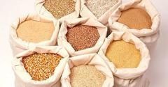 Пищевая моль - как избавиться от моли на кухне?