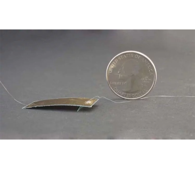Создан супер тонкий робот-таракан
