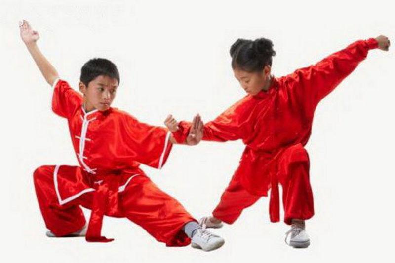 Какое выбрать боевое искусство для занятия здоровьем
