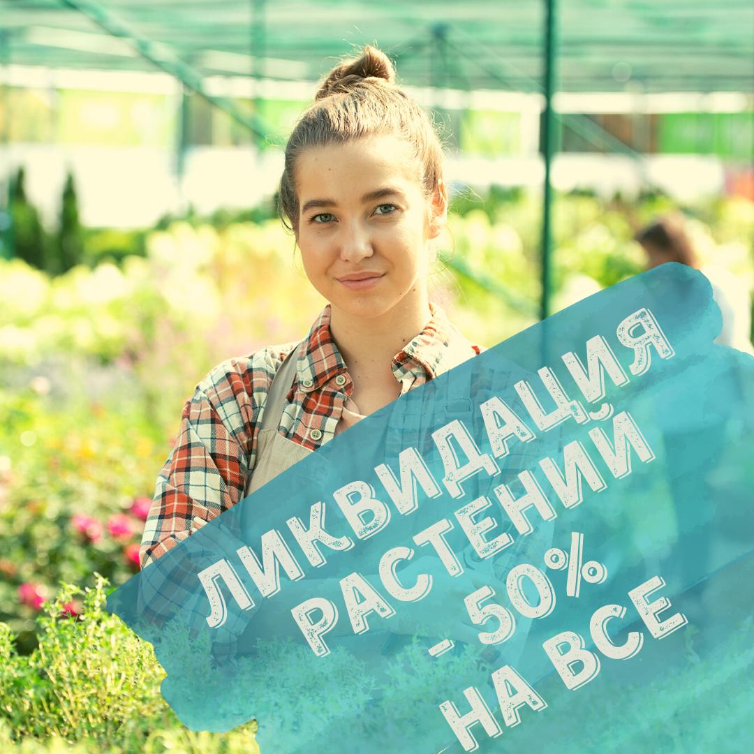 Осенняя ликвидация растений!!! -50% на все!!!