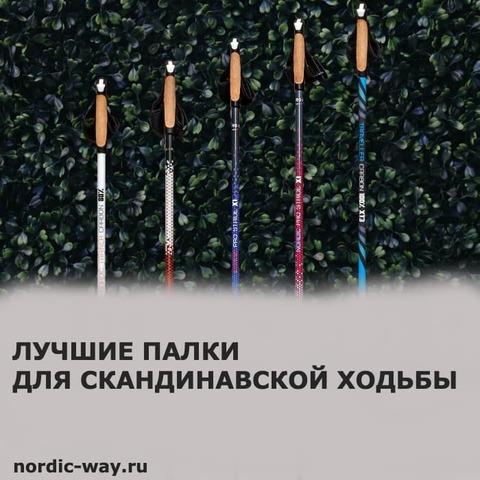 Лучшие палки для скандинавской ходьбы