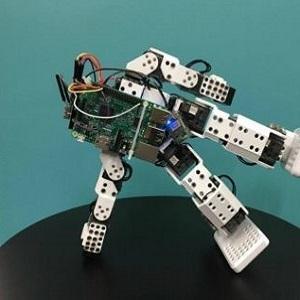 Повысилась устойчивость двуногих роботов