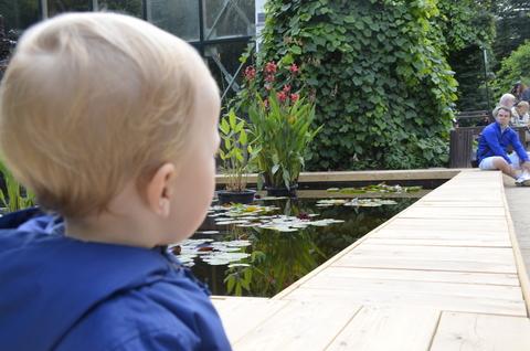 3 важных совета тем, чей ребёнок впервые идет в детсад