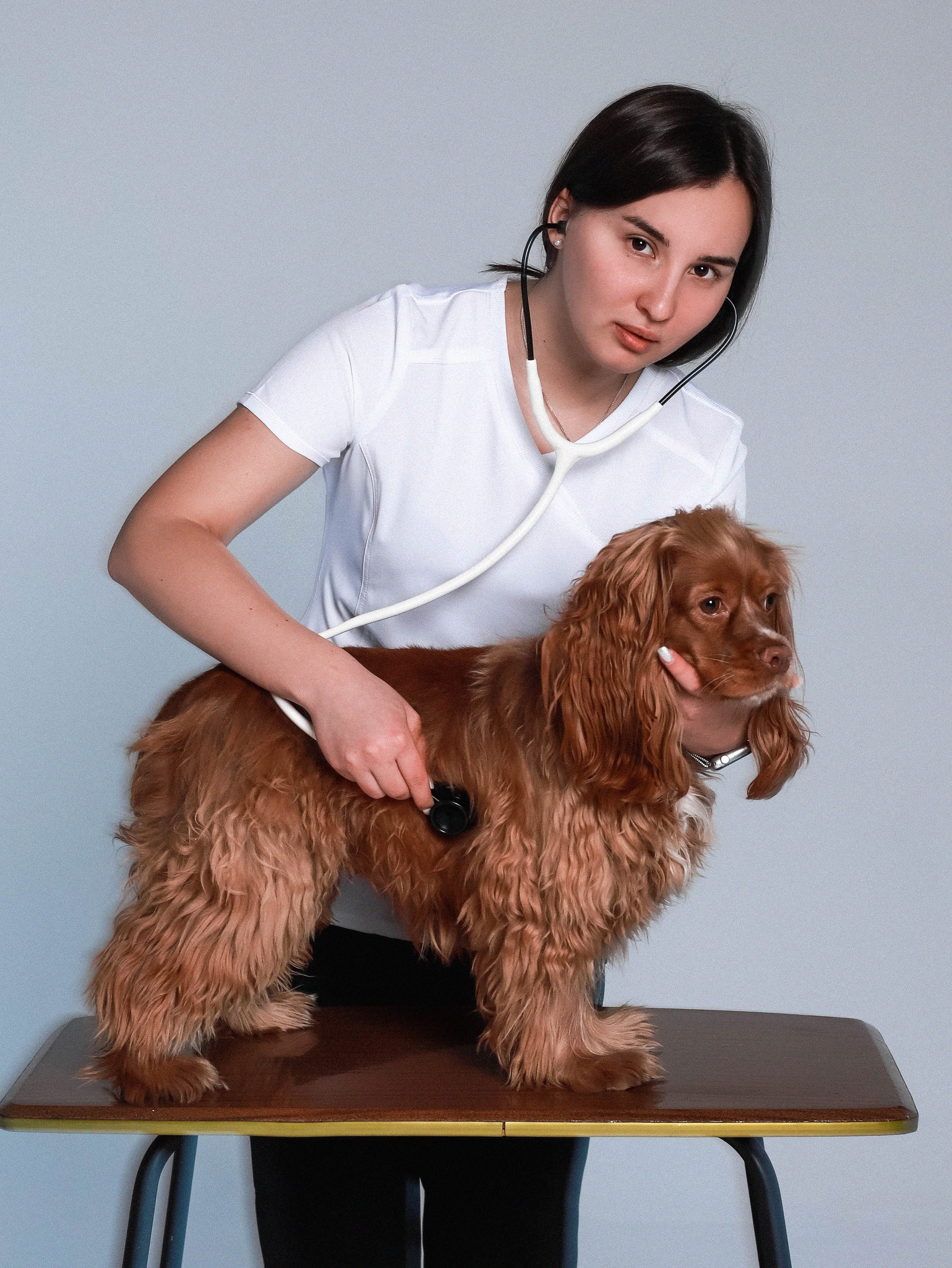 Ветеринарам ONLY