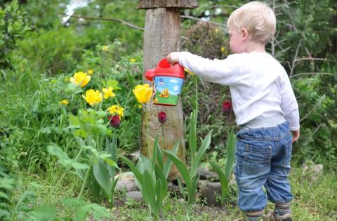 5 идей, чтобы занять ребенка на даче с пользой для всех!