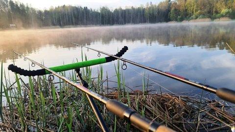Июнь - на рыбалку плюнь? О фидере в начале лета