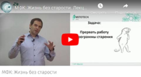 Онлайн-лекции
