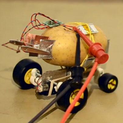 Самоуправляемый робот из картофеля