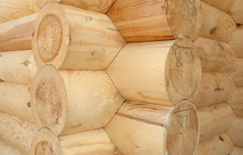 Биозащита древесины при строительстве дома из ОЦБ и профилированного бруса естественной влажности